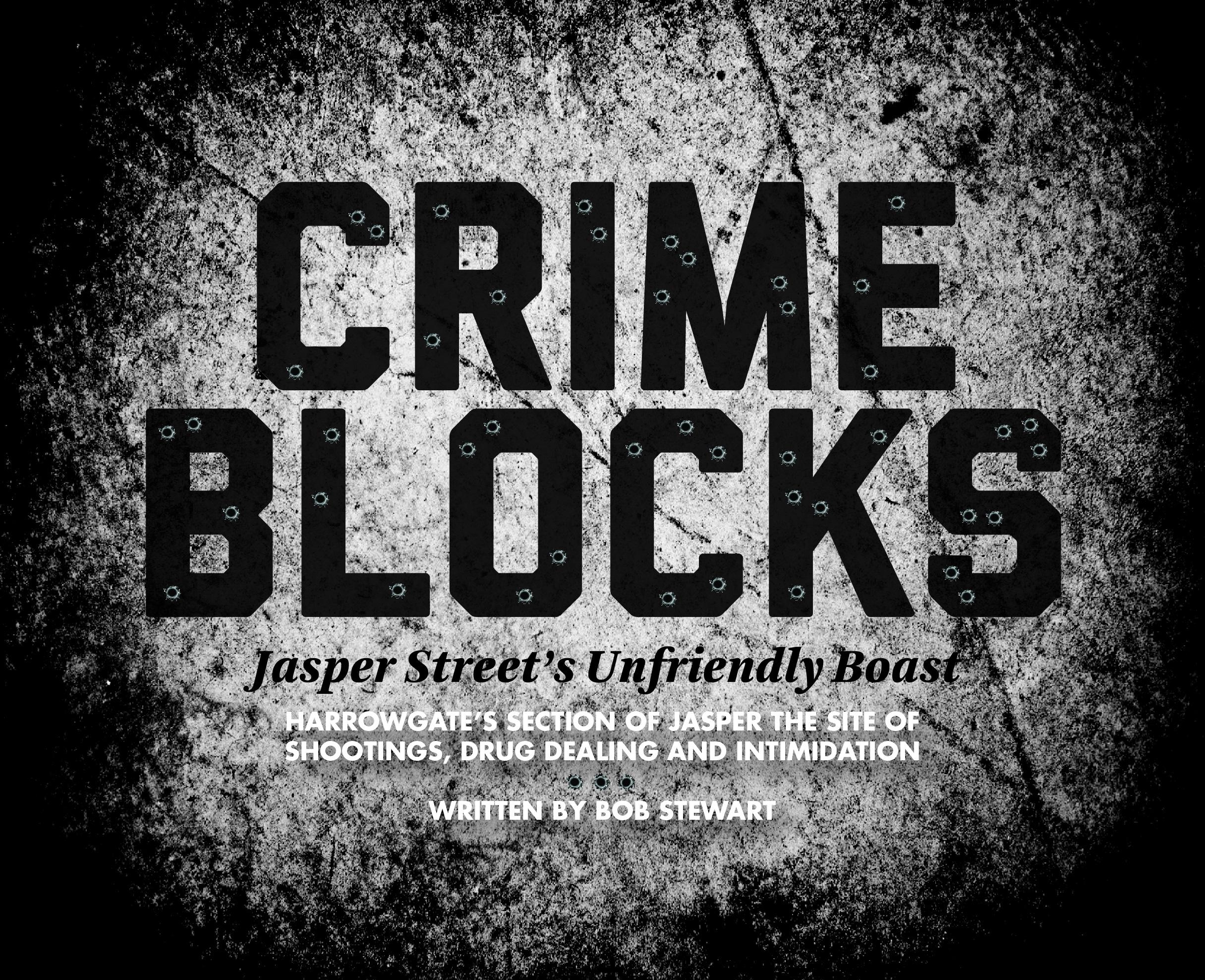 Overdose By Little Daylight Crime Blocks Jan Cover