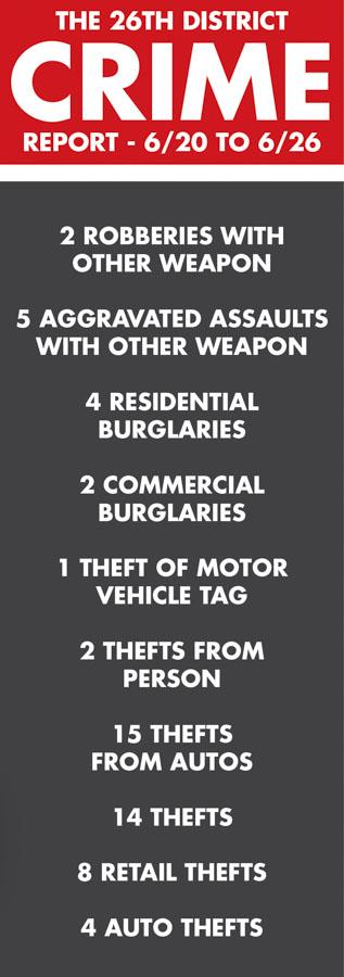 crime report june 29