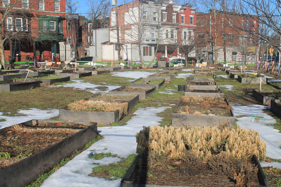 Community garden beds at Strawberry Mansion